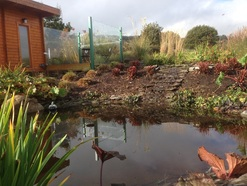 natural pond water feature